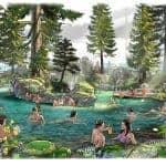 Skog Lagune